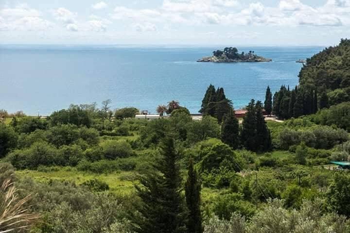 Amazing View House