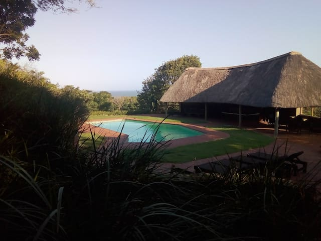Sparkling pool and Entertainment lapa to enjoy together