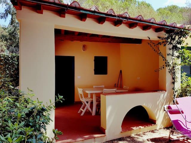 All'ombra del Pino (Milva 9) - Capoliveri - Daire