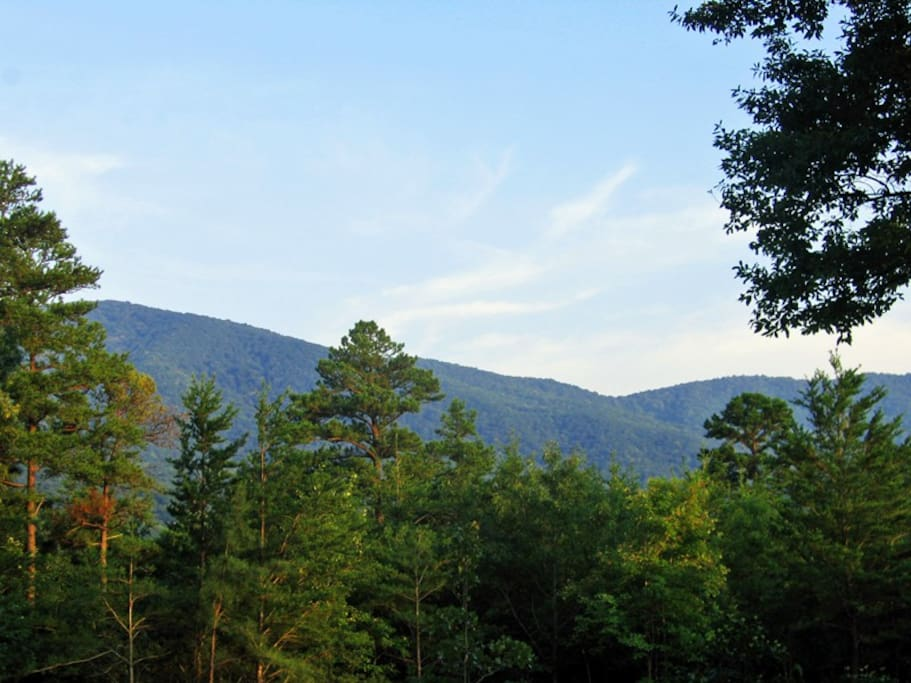 Breathe in the fresh mountain air and enjoy the view from the back porch.
