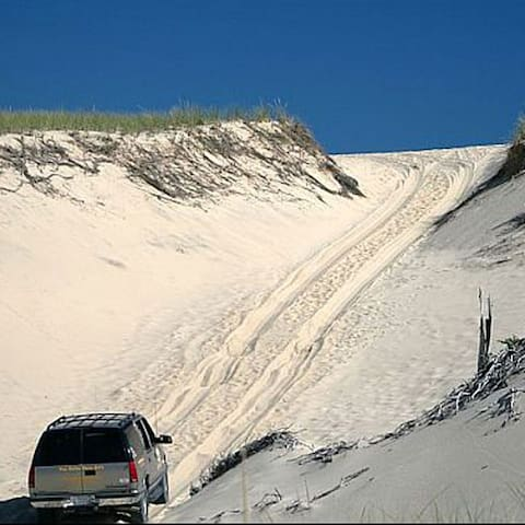 The discount card gives you discounts at Arts Dune Tours through the Province Lands to the beach.