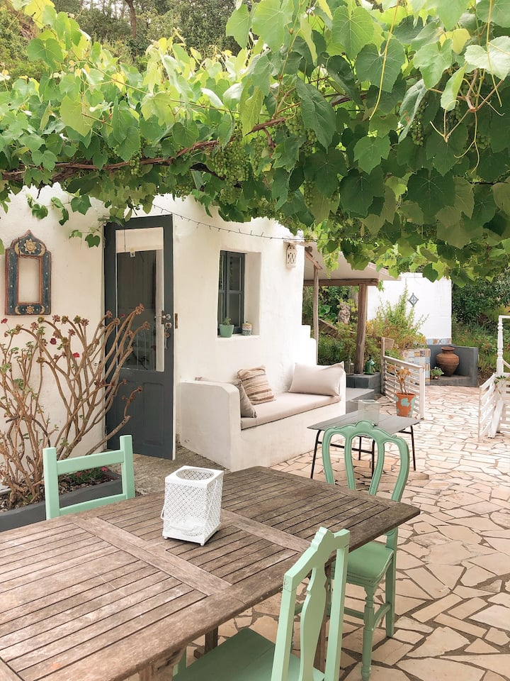 """Casa do Forno""- Cozy cottage under the vine"