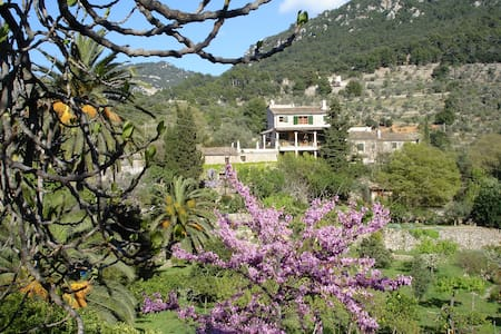 Haus Jasmin auf der Finca Son Salvanet