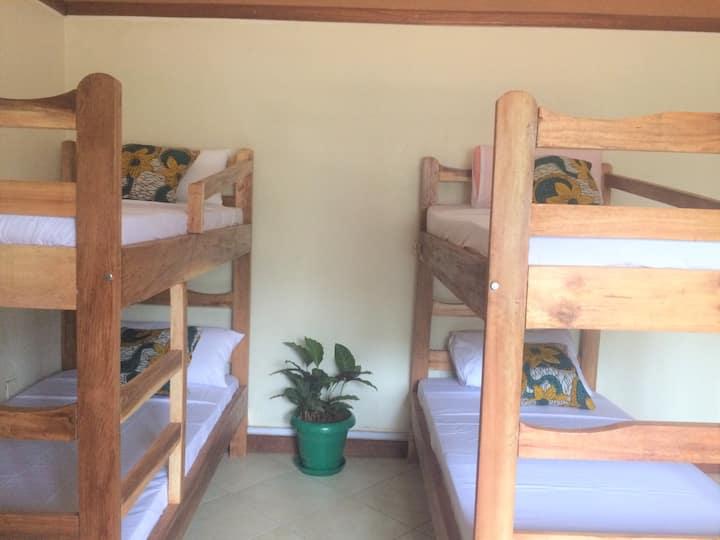 The Five Horsemen Backpackers Hostel 5