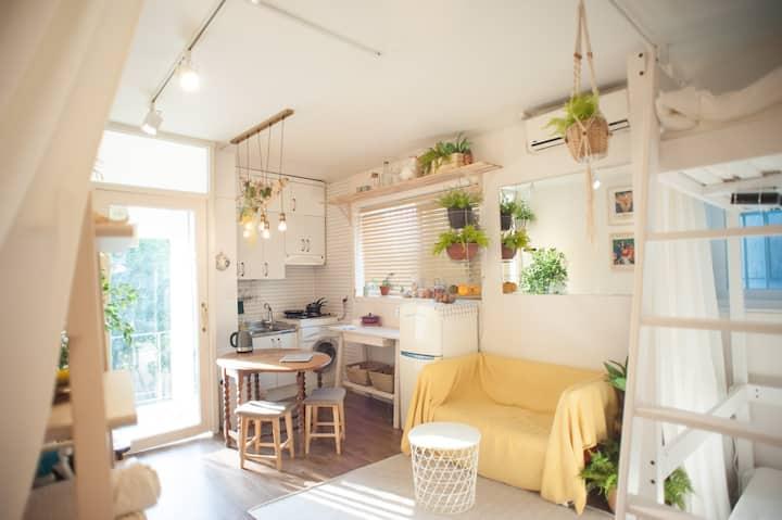 ❤️ Garden Studio