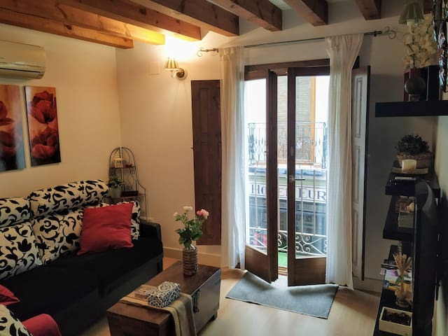 Lovely apartment in historic centre