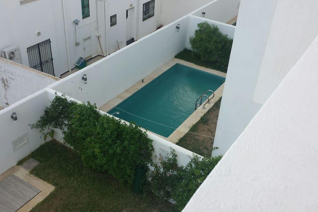 Pool von oben