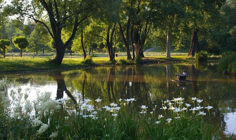 Park STROMOVKA only 10 minutes walk