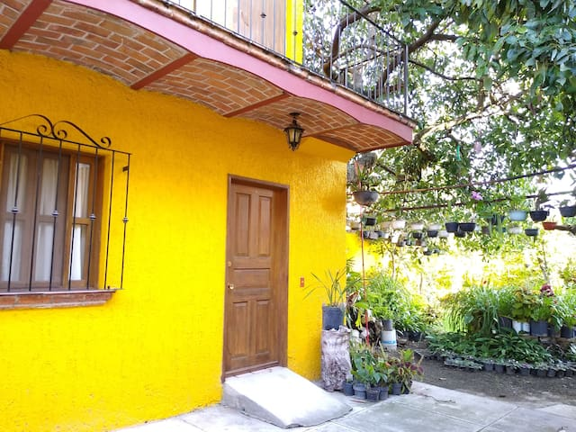 Barby's Guest Room - Ajijic Centro