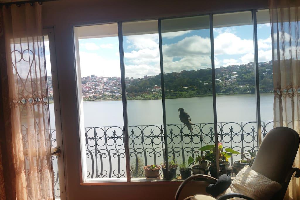 Très belle vue dégagée  sur le lac.