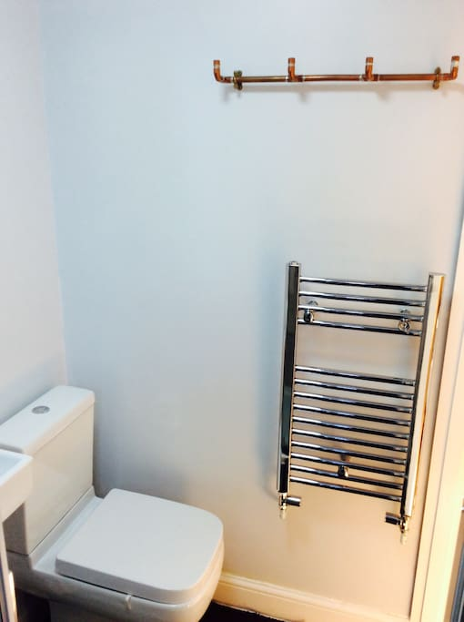 Space saving toilet and heated towel radiator