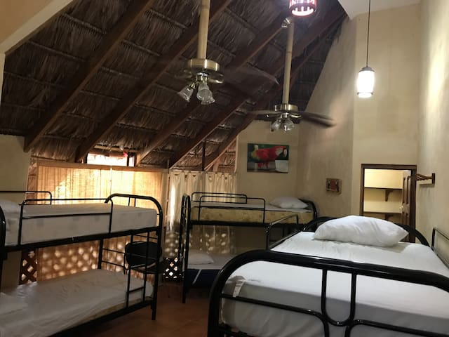 La Palapa Hut Dorm with Fans