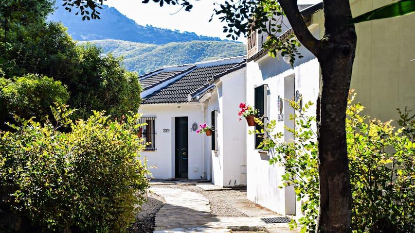 Houses Los Paraísos