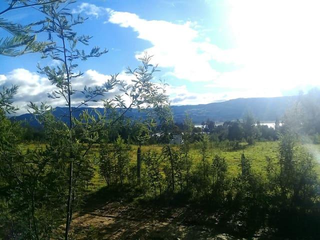 Vista Reserva el bosque