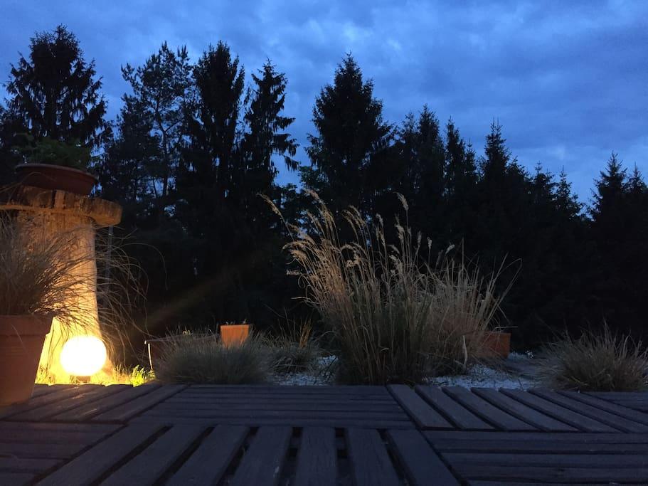 Le jardin au soir tombant