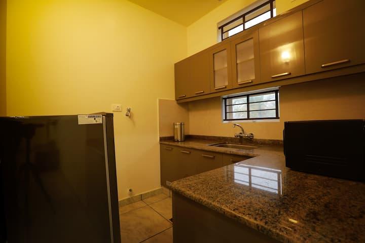 1BHK furnished premium apartments