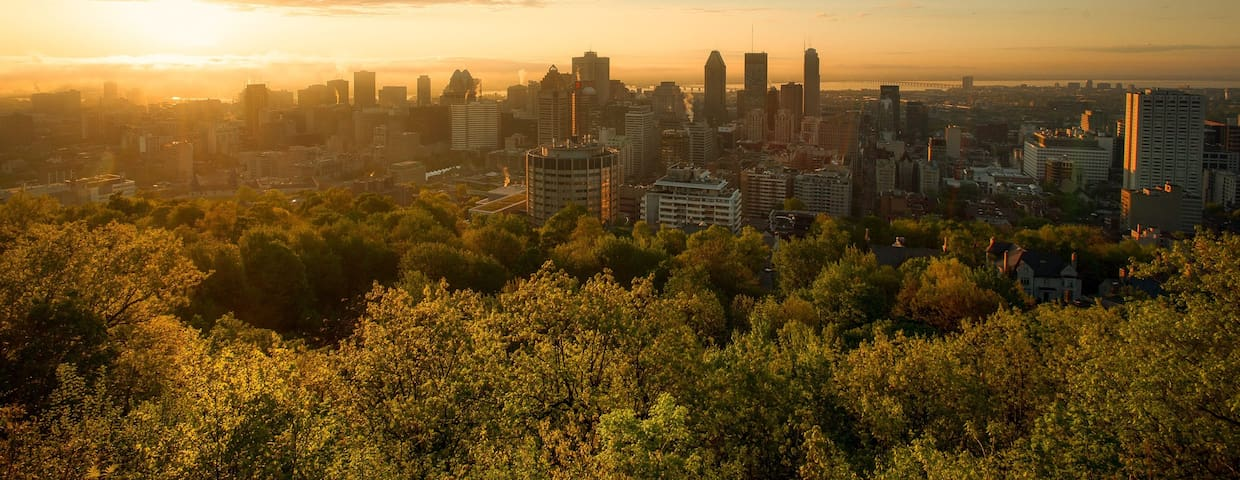 Vacation rentals in Montreal