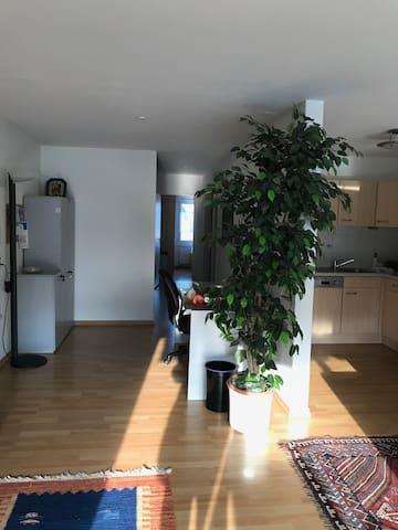 spacious bright 2-room flat