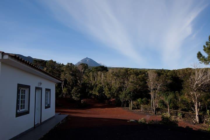 Casa 1 quarto-Pico Dreams Sportfish- Pico, Açores
