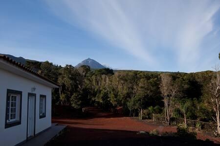 Casa 1 quarto-Pico Dreams Sportfish- Pico, Açores - Rumah