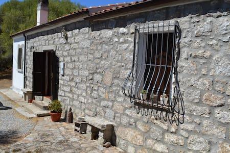 Affitto suggestivo Stazzo gallurese - Luogosanto  - Rumah