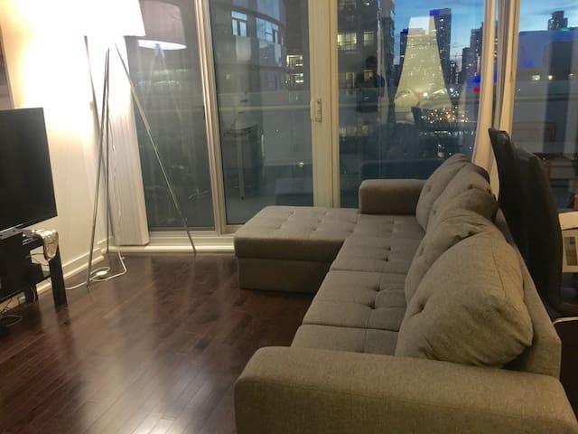Beautiful 2 bedroom apartment near Union Station!