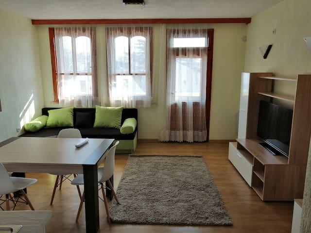 Guest apartments Viktoriq
