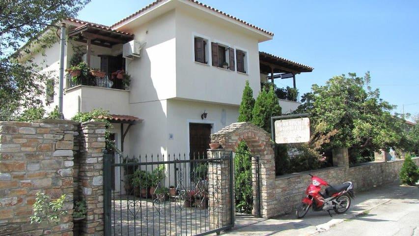 A house in Milina Pelion - Milina - House