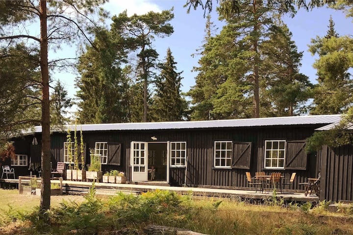 A Seaside Oasis on the Northern Tip of Gotland.