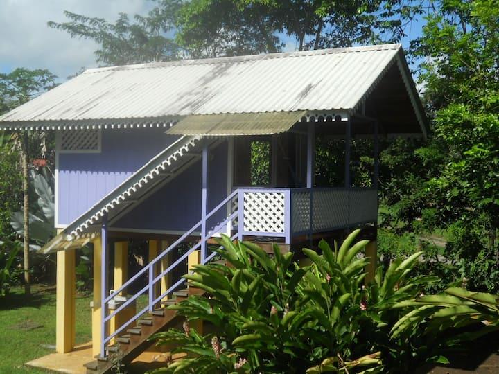 Caribbean Beach Cabin Solo Retreat