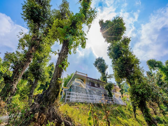 OYO - Gorgeous 1BHK On Kempty Road, Mussoorie