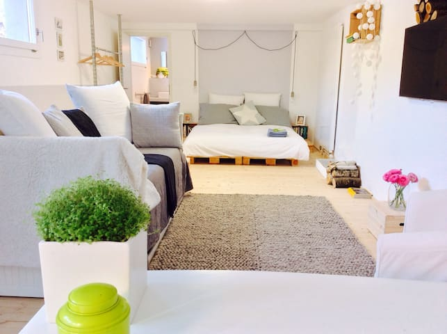Calm spacious renovated unit, garden and parking - Grand-Lancy - Haus