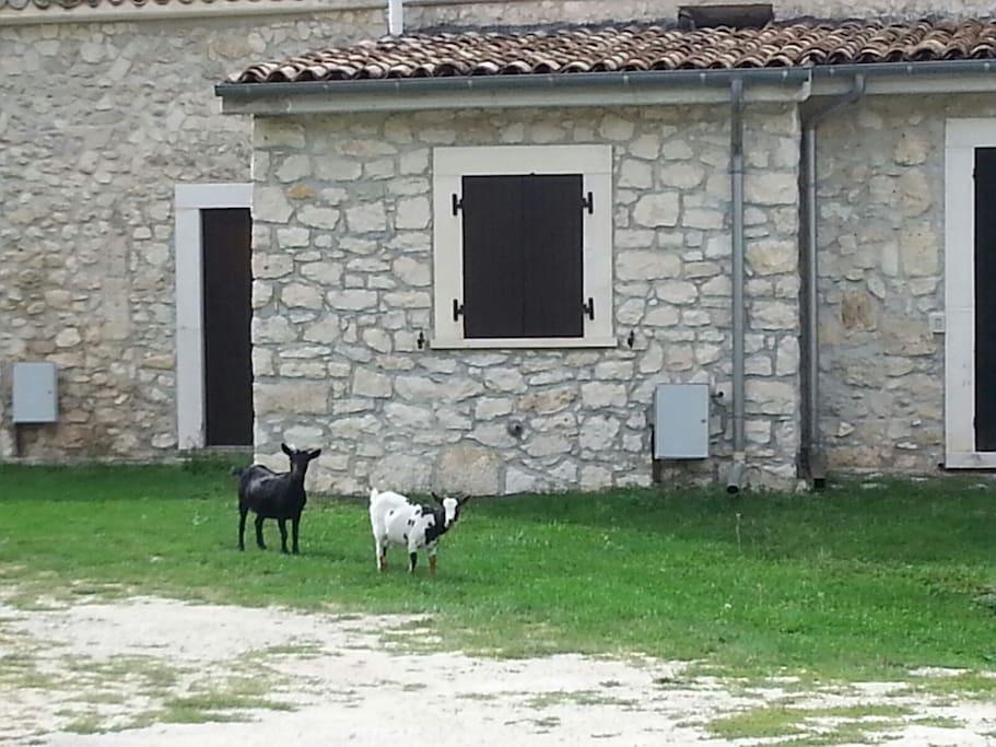 Vista del lato della casa che guarda la Majella