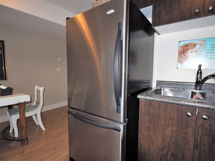 Large fridge with bottom drawer freezer will hold all your goodies