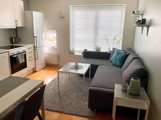 Lys og nyoppusset leilighet i Sandnes sentrum