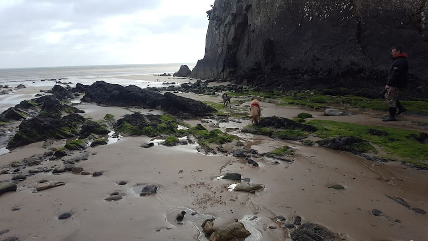 800 yards from the sea in Pembroke National Park