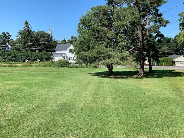 Front yard looking towards Seneca Lake.