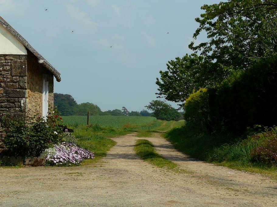 Accès direct au chemin vers les champs / Direct access to fields