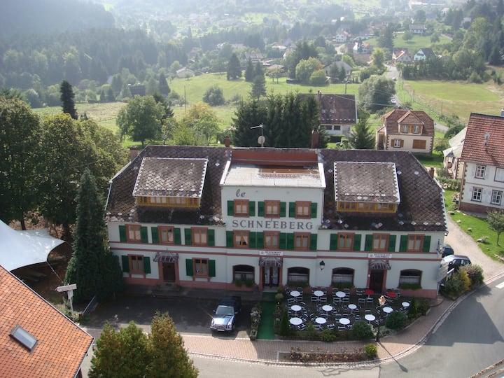 Le Schneeberg