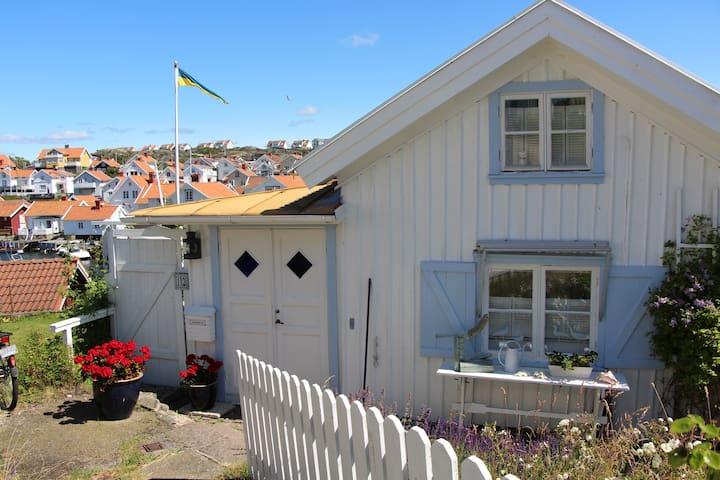 Amazing Summer House
