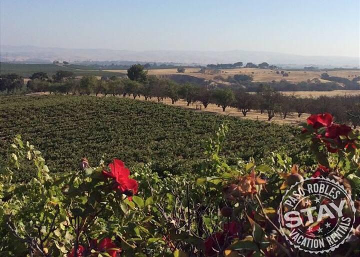Hidden Acre Vineyard Deluxe