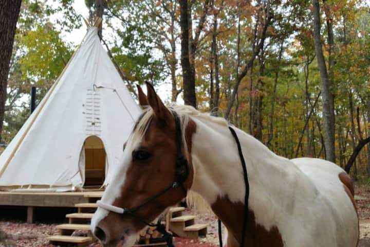 Upscale Camping in Indian Tipi ~ Eagle's Landing