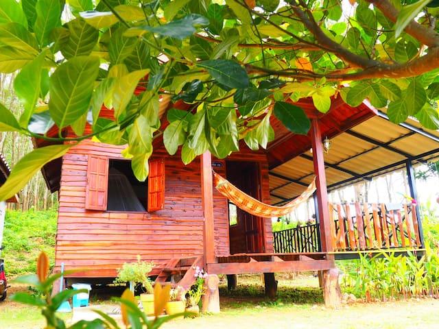Sonya guesthouse 3 (Villa)