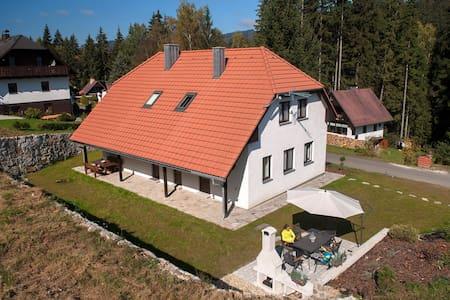 Apartmány Vltavice - Šumava - Horní Vltavice - 獨棟
