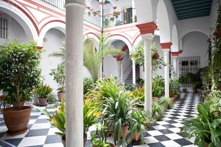 CASA PALACIO , GRAN TERRAZA VISTAS A LA GIRALDA