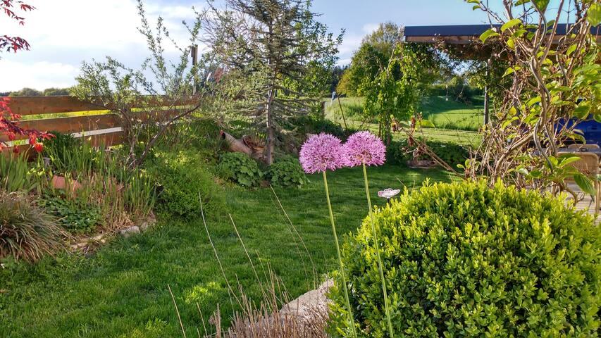 Neue 80qm 3 ZKB mit Garten_New 80sqm ap. w. garden