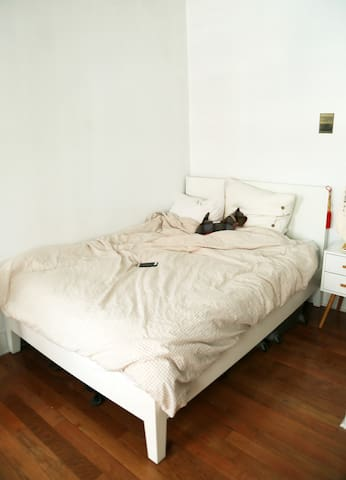 Spacious, private room in heart of Willimasburg