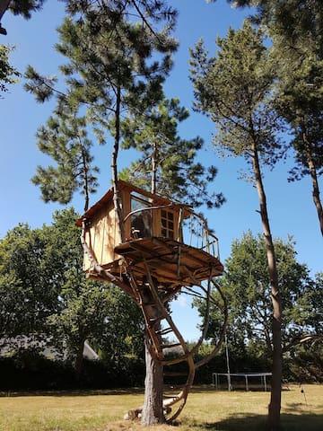 Artistic tree house
