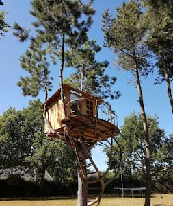 Artistic tree house