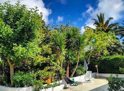 Amazing villa w/ veranda surrounded by vegetation - Ostuni